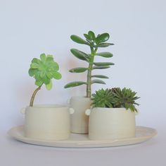 Hey, I found this really awesome Etsy listing at https://www.etsy.com/listing/215356143/white-planter-plant-pot-set-stoneware
