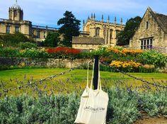 Nuestra bolsa sigue viajando. En esta ocasión se ha ido a Oxford, a estudiar, que es lo que se hace bien en Oxford. La foto nos la manda @maruliagreen: le agradecemos que pasee la bolsa por tamaño escenario y la llene de libros y cuadernos.