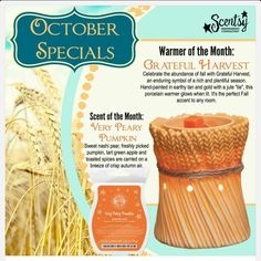 October scent and warmer of the month, GRATEFUL HARVEST and VERY PEARY PUMPKIN.. http://innasidorkina.Scentsy.ca
