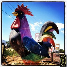 """Nothing says """"Road Trip"""" like a giant rooster. Click the pic for all of the #Sockmonkey photos"""