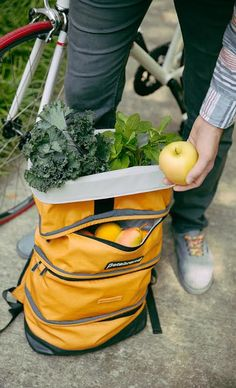 Betabrand backpack perfect for bringing home farmers market finds