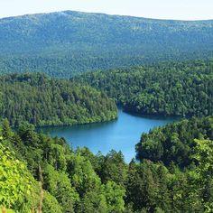 【love.rilarchoco】さんのInstagramをピンしています。 《北海道の形をした湖、ペンケトー。 あのぎっしり詰まった原生林には、クマさんが住んでいるそうです(*´ω`*) #自然 #植物 #木 #森 #湖 #北海道 #旅行 #nature #plant #tree #forest #lake #hokkaido #travel  2016/07/05(tue)》