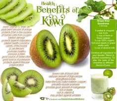 Health & nutrition tips: Health benefits of kiwi Kiwi Health Benefits, Matcha Benefits, Fruit Benefits, Papaya Benefits, Juicing Benefits, Sources Of Dietary Fiber, Calendula Benefits, Raw Food Recipes, Diet Recipes