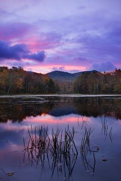A colorful magenta sunrise over a small pond, Vermont. Small Ponds, Nature Pics, Art Nature, Stars And Moon, Vermont, Magenta, Countryside, Sunrise, Sky