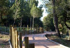 Paraje Natural Municipal Ermitorio de la Magdalena Magdalena, Valencia, Costa, Sidewalk, Orange Blossom, Natural Playgrounds, Community, Pictures, Side Walkway