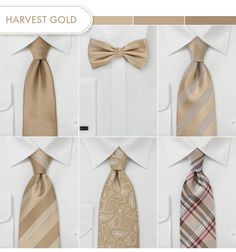Groom and Groomsmen Ties in Harvest Gold.