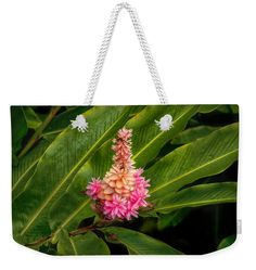 Flowers Weekender Tote Bag featuring the photograph Rainforest Beauty by Hanny…