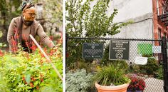 """New York Times on community gardens. """"There is some evidence, in fact, that the bulk of New Yorkers do not have an unlimited appetite for growing their own kale."""""""