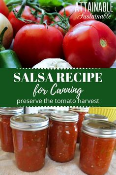 Religious Magic And Spiritual Ability Element One Canning Salsa At Home Is An Easy Way To Preserve Your Tomato Harvest For The Pantry. A Simple Water Bath Canning Process Is All It Takes. The Best Salsa Recipe For Canning, Salsa Canning Recipes, Canning Salsa, Canning Tips, Homemade Salsa For Canning, Easy Canned Salsa Recipe, Home Canning, Preserving Tomatoes, Preserving Food
