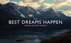 Always dreaming.