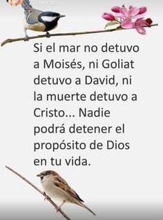 Nada detiene a Dios Gods Love Quotes, Quotes About God, Faith Quotes, Wisdom Quotes, Life Quotes, Christian Images, Christian Life, Christian Quotes, Bible Encouragement