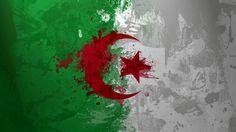 Fonds d'écran Art - Numérique > Fonds d'écran Voyage - Drapeaux Drapeau Algerie par valou72400 - Hebus.com
