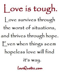 Love Quotes Com Endearing Love Quotes  Httpwwwlovequoteseverymorningisspecial