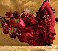 ❥ Flamenco
