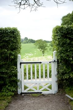 Boxwood hedge and charming wooden gate