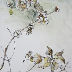 """Snowberry Study lll"" pen and watercolour on clayboard suzanne northcott"
