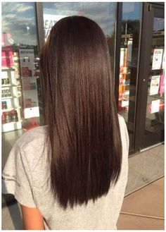 Brown Hairs, Long Brown Hair, Brown Blonde Hair, Brown Hair With Highlights, Light Brown Hair, Straight Brunette Hair, Warm Brown Hair, Brown Straight Hair, Dark Hair