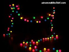 PING PONG BALLS!  However, be sure to use LED lights.  (colored lights with white balls is cute)