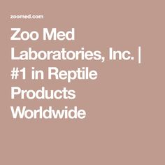 Zoo Med Laboratories, Inc. | #1 in Reptile Products Worldwide