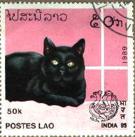 Stamp from India - 1989