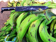 Green plantains to make Tostones or Tajadas Fritas...