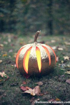 pumpkin - Halloween Costumes 2013