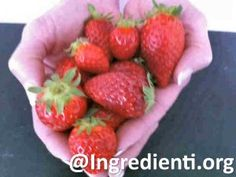 Fragole: bellezza, bontà e salute in un frutto | Ingredienti.org