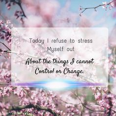 Today, I refuse to stress myself out about things I cannot change.  #Wednesdaymotivation #nostress #LetItGo #positivemind #wednesday