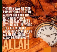 Every thing belongs to Allah                                                                                                                                                                                 More