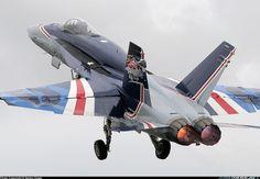 RAAF Hornet 20th anniversary special livery. Advance Australia!