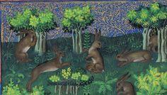 Gaston Phoebus, Le Livre de la chasse, Paris ca. 1407 (NY, Morgan, MS M. 1044, fol. 15v)