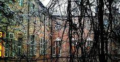 Ecco il glicine di Palazzo Chiablese. Meraviglioso in primavera affascinante in inverno. #torino #turin #palazzochiablese #cortile #neveallecorti #fotografatipervoi - #ciauturin  Foto di @mibact_piemonte
