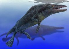 Rodhocetus - Wikipedia, la enciclopedia libre