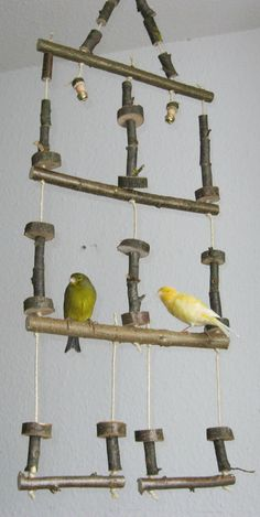 Vogelschaukel 3-stöckig mit Glöckchen, Nymphensittich- und Wellensittich