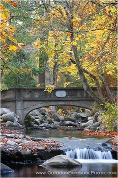 Atkinson Memorial Bridge, Lithia Park, Ashland, Oregon-I used to play in applegate creek all the time when I was a kid!!