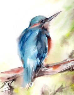 Kingfisher print watercolor painting Art by CanotStopPrints. etsy