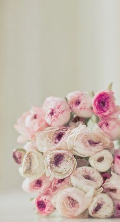 #Peonies | #Pink | #Flowers | #Petals | #Plant | #Boquet | #Decoration | #Girly | #Pretty | #Green | #Leafy