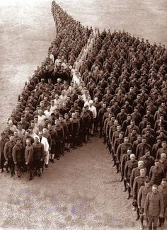 Commemorating the horses that served in WW1