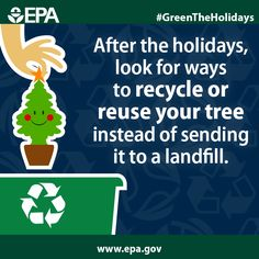 Evergreens can find a new life when they're reused or recycled – check out your local options to #GreenTheHolidays.