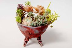 Any container can be a dish for a succulent garden! Old colanders, rubber boots...anything!