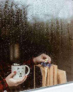 Nature photography rain mists 34 Ideas for 2019 Rainy Day Photography, Rain Photography, Photography Ideas, Rain And Coffee, Rain Window, What A Nice Day, I Love Rain, Autumn Aesthetic, Coffee And Books
