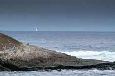 Tenerife, Spain, Beach, Water, Travel, Outdoor, Water Water, Outdoors, Aqua