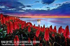 Ring of Fire, La Jolla Shores, California