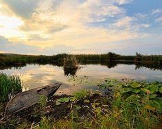 Delta Dunarii Uzilina Program Ornitologi 2014.Oferte si detalii pe www.yoyotravel.ro