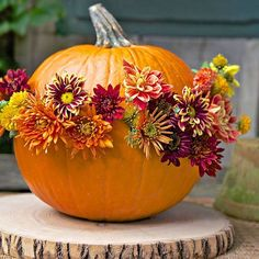 Use these fall front porch ideas to add pretty seasonal touches to your home. Whether it's a pumpkin door hanger or autumnal planter, you're sure to find beautiful fall inspiration for your front entry. Autumn Decorating, Pumpkin Decorating, Decorating Ideas, Porch Decorating, Decor Ideas, Creative Pumpkins, Deco Nature, Deco Floral, Fall Pumpkins