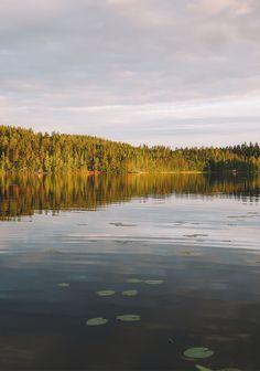 10 Jours en Finlande autour du Lac Saimaa #1 • Le chien à taches