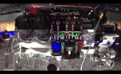 Viper Engine Disco Party | Wild Boys TV