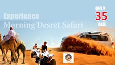 At evening safari tour in Dubai with our Desert Safari professional services, we have only one goal, to make sure you have the best desert safari Dubai ever within the budget. http://dubaisafaridesert.com/  #dubaidesertsafari #desertsafaridubai #desertsafarideals