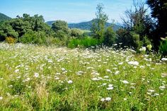 places-to-visit-in-catalonia-hiking-in-la-garrotxa