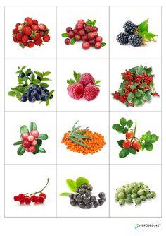 Fruit And Vegetables Flashcards 55 Ideas Teaching Kindergarten, Teaching Kids, Kids Learning, Fruit And Veg, Fruits And Vegetables, Baby Shower Fruit, Activities For Kids, Crafts For Kids, Kids Background